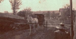 Hazel Drew Horse & Buggy